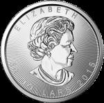 Canadian Platinum Maple Leaf Coins